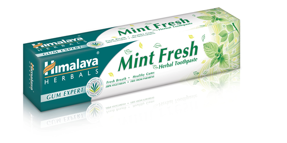 MINT FRESH HERBAL TOOTHPASTE (GUM EXPERT) 75 G